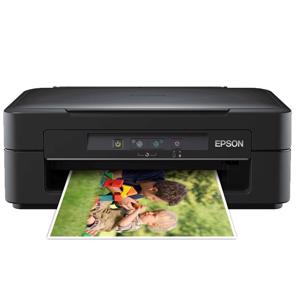 Epson Expression XP100 Ink Cartridges