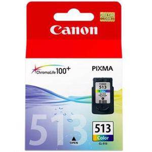 Canon 513 Colour Ink Cartridge (350 Pages)