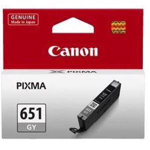 Canon 651 Grey Ink Cartridge (330 Pages)
